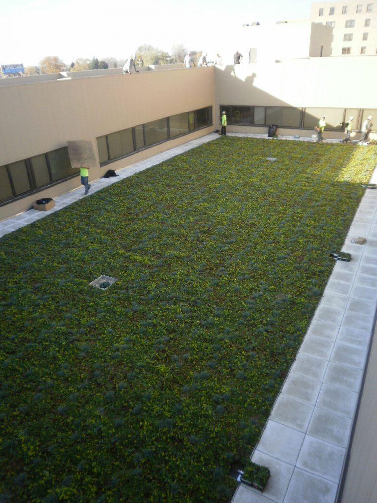 Garden Roof System